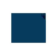 en.NFC_logo_TM